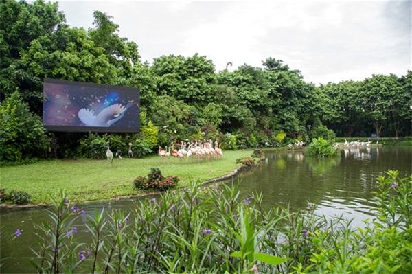 泰兴仙鹤湾公园平面设计图
