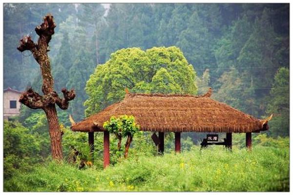 赣州市乡村旅游发展迅速图片