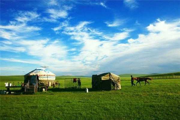内蒙古:实施乡村振兴战略 打造特色亮丽村镇
